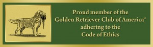 Golden Retriever Club of America Member